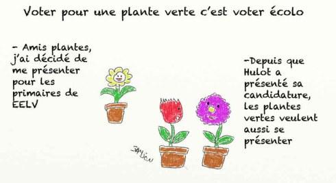 Europe Ecologie Les Verts EELV fleurs pots plante verte Nicolas Hulot VS Eva Joly