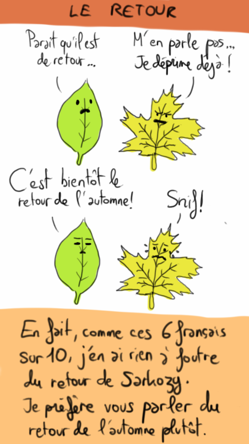 feuilles-automne.png