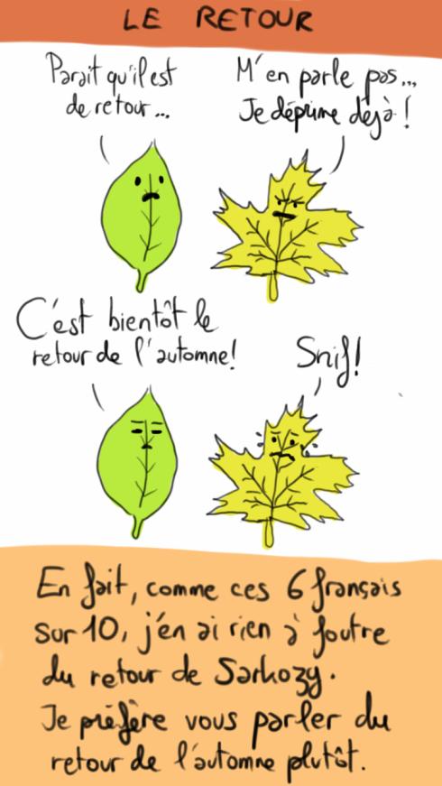 feuilles-automne.png